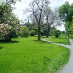 Central Park The Glebe Presented To You By The Molly & ClaudeTeam Realtors Royal LePage Team Realty Ottawa Real Estate