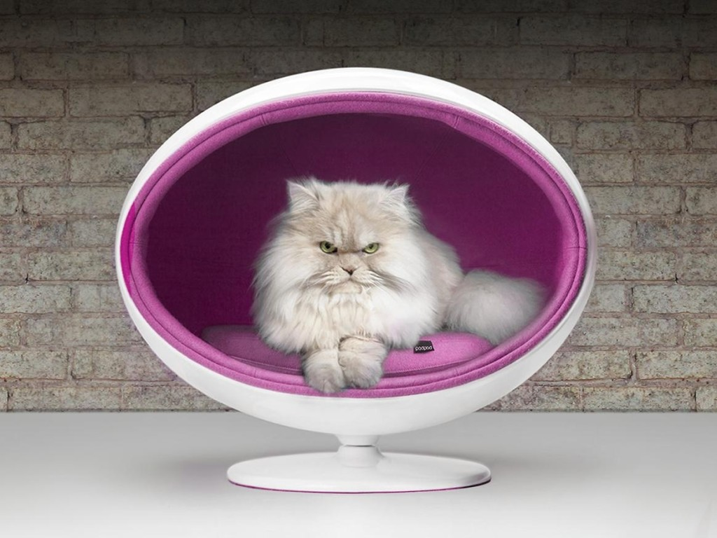 19a-chic-cosy-cat-beds-modern-homes